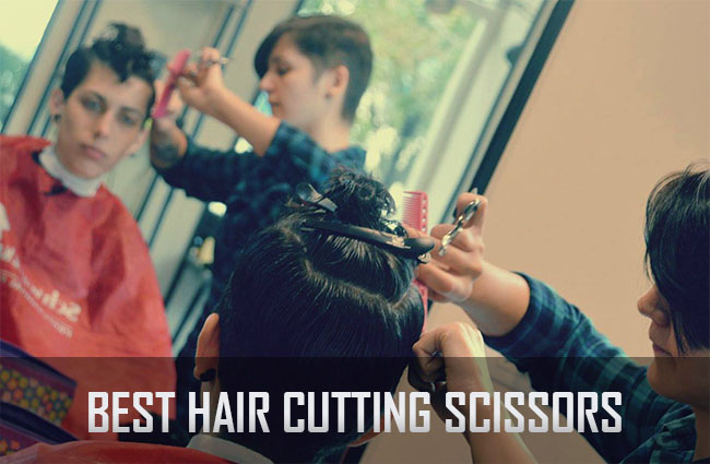 10 Best Hair Cutting Scissors